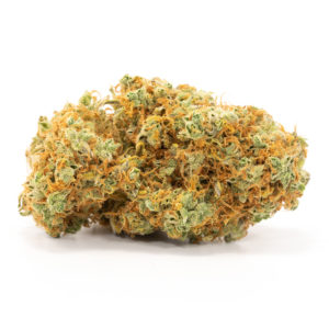 Red-Congolese-weed