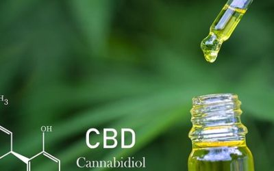 What is CBD? A Brief Introduction to the Benefits of Cannabidiol